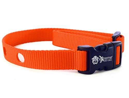 Extreme Dog Fence Dog Collar Replacement Strap - Bright Orange - Compatible with Nearly All Brands and Models of Underground Dog Fences