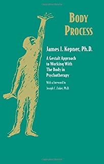 Trauma therapy and clinical practice neuroscience gestalt and the body process a gestalt approach to working with the body in psychotherapy gestalt institute fandeluxe Images