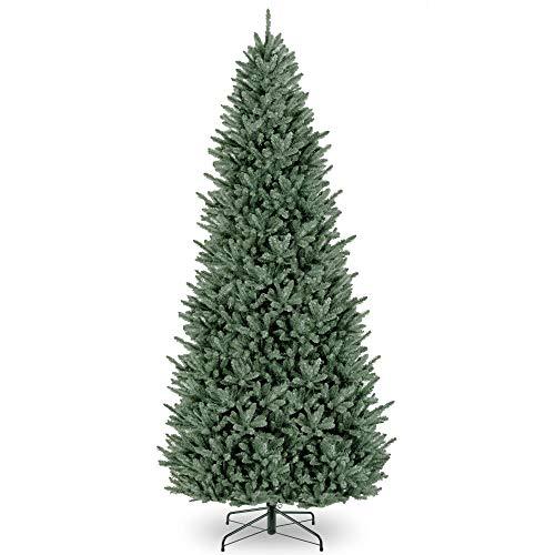 12' Natural Fraser Medium Fir Artificial Christmas Tree - Unlit ()