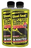 Head Gasket Sealer for 6 Cylinder Engines - Steel