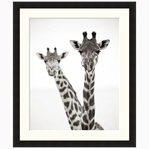 Frame Giraffe (eFrame Fine Art | Giraffe Heads II Black and White Wildlife by Andy Biggs 16