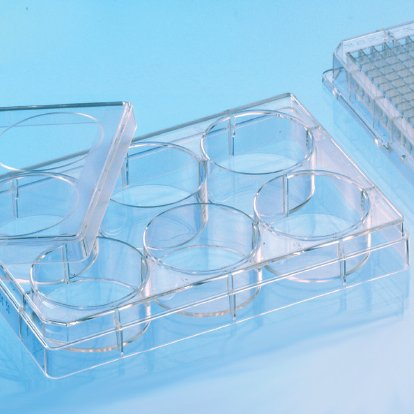 Greiner Bio-One 657160 CELLSTAR Cell Culture Multiwell Plate with Lid, TC Treated, Sterile, Flat Bottom, Chimney Style, 6 Well (Pack of 100)