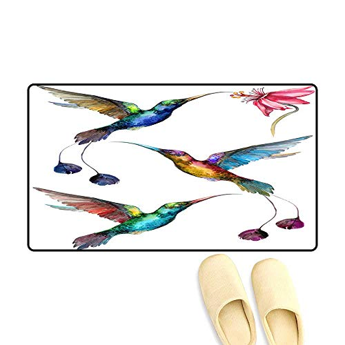 (Interior Doormat Beautiful Colorful Flying Hummingbirds Isolate on White backgroun Collection of Exotic Tropical Birds wi vivi Feathering)