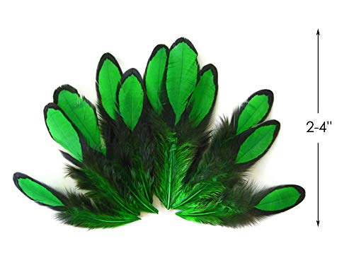 Moonlight Feather | 1 Dozen - Kelly Green Whiting Farms Laced Hen Saddle Feathers Craft Halloween Fly Tying -