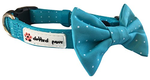 Dotted Paws Dog Collar BOW Tie PADDED Cute Polka Dots Comfortable NEOPRENE Fabric for Ruffed Adventures (Medium, Aqua with removable Bowtie)