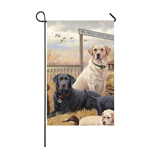 - Starfactr Labrador And Golden Retriever Puppies Welcome Garden Flag Vertical Outdoor & Indoor Decorative Double Sided Flag for Spring Summer Farm House Decoration