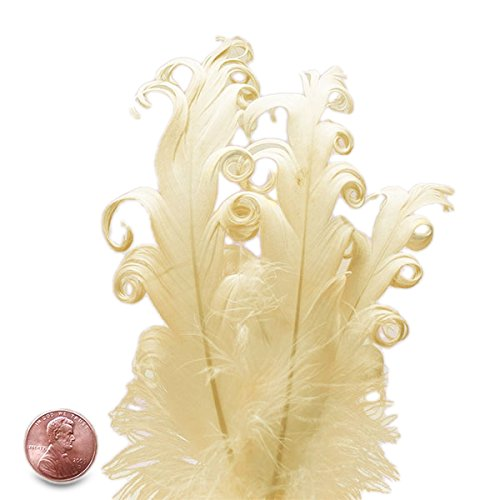 Ivory Nagorie Goose Feathers, 5