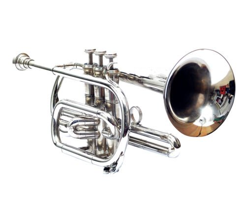 Queen Brass Cornet Chrome Finish Bb Pitch Nice Look W/Case Mp Silver by Queen Brass