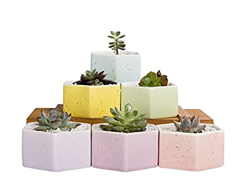 Mkono Set of 6 Ceramic Small Plant Pots 3 Inches Succulent Planters Indoor, Hexagon