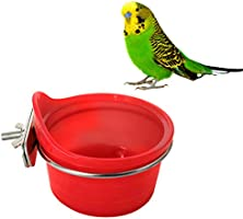 POPETPOP Suministros para pájaros Loro multifunción Comedero para ...