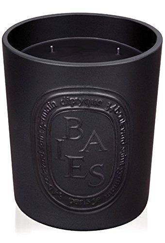 diptyque-baies-indoor-outdoor-ceramic-candle-513-oz