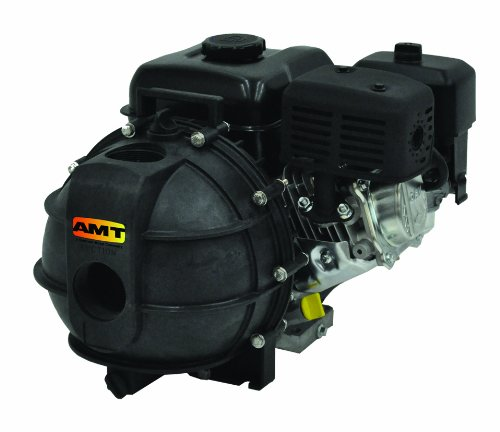"AMT Pump 3824-99 Engine Driven AG/Dewatering Pump with Briggs & Stratton Engine, Polypropylene, 4 HP, Curve A, 2"" NPT Female Suction & Discharge Ports"
