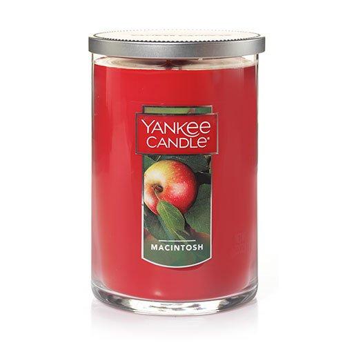 Candle Wick 2 (Yankee Candle Large 2-Wick Tumbler Candle, Macintosh)