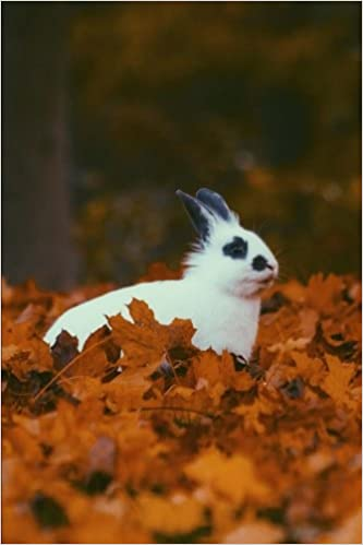 A Black and White Rabbit Sitting in Some Orange Leaves in Autumn Journal: 150 Page Lined Notebook/Diary