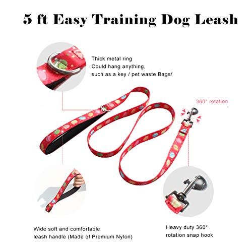 QQPETS Set Personalized Collars Leash with Handle for Puppy Medium Large Dogs