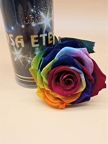 Almaflor Rosa eterna Arcoiris Multicolor Extra Gratis TU ENVIO Prime Rosa preservada arcoiris Cabeza Extra Rosa preservada arcoiris Hecho en Espana
