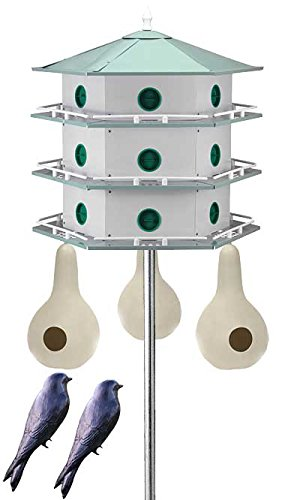 BestNest Heath 18-Room Deluxe Purple Martin House & Gourds Kit