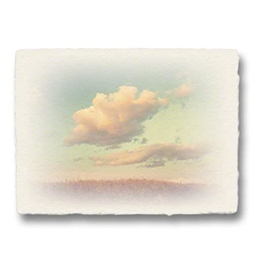 "Amazon.com: Artwork ""clouds and reeds on hill at sunset"