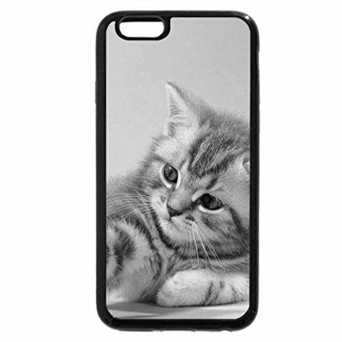 """iPhone 6S Plus Case, iPhone 6 Plus Case (Black & White) - """"Aggressive"""" Kitten"""
