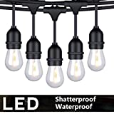 FOXLUX Outdoor String Lights - 48 ft Shatterproof and Waterproof Heavy-Duty LED Outdoor Lights - 15 Hanging Sockets, 1 W Plastic Bulbs - Create Ambience for Patio, Backyard, Garden, Bistro, Cafe