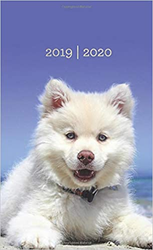 2019-2020: Two Year Monthly Pocket Planner   Mini 4 x 6.5 ...
