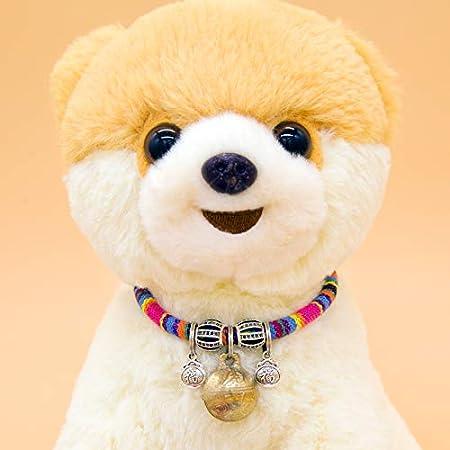 collier pour chien super beau