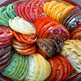 David's Garden Seeds Tomato Beefsteak Rainbow DGS403050 (Multi Color) 500 Plus Organic Heirloom Seeds, Set of 10