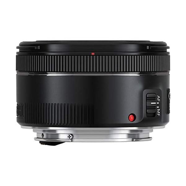 RetinaPix Canon Portrait & Travel 2 Lens Kit