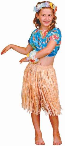Child's Hawaiian Hula Dancer Girl Costume (Large) (Hula Dancer Costume)