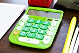 CATIGA CD-8185 Office and Home Style Calculator