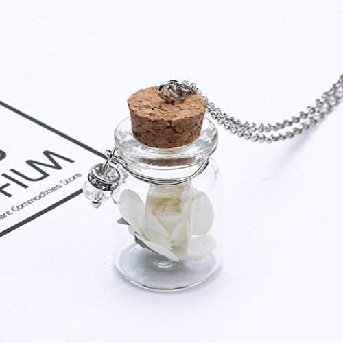 Sinwo Gift! Glow in the Dark Flower Glass Tiny Wishing Bottle Vial Necklace Pendant Chain (White) (Bold Type)
