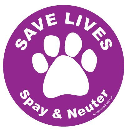 Save Lives Spay & Neuter Circle Magnet - Purple - Neuter Magnet