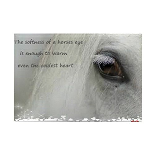 CafePress - The Softness Of A Horses Eye - Rectangle Magnet, 2