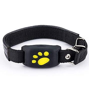 Amazon.com: QNJM GPS rastreador de mascotas para perros ...