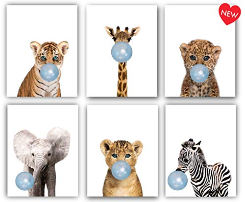 Safari Blue Bubblegum Baby Animals Nursery Decor Art - Set of 6 UNFRAMED Wall Prints 8x10 (Blue) ()