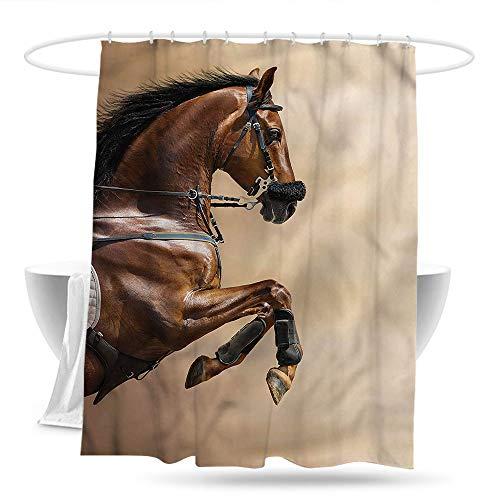(Kids Bathroom Shower Curtain Horses Show Animals with a Leash Bathroom Curtain Washable Polyester 70in×70in)