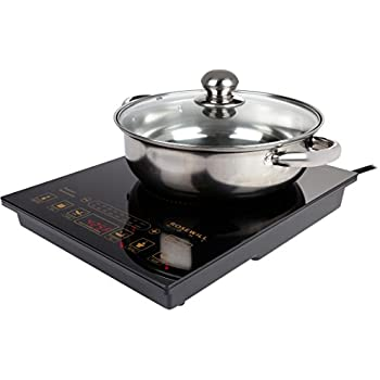 "Rosewill 1800W 5 Pre-Programmed Settings Induction Cooker Cooktop , Included 10"" 3.5 Qt 18-8 Stainless Steel Pot, Gold, RHAI-16002"