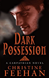 Dark Possession: Number 18 in series (Dark Series)