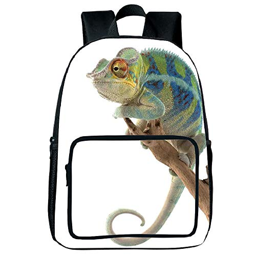 Customizable Square Front Bag Backpack,Reptile,Exotic Panther Hanging from Branch Watching The World Wild Life Nature Animal Earth Print Decorative,Multi,for Children,Diversified Design.15.7