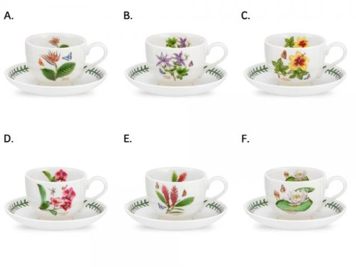 PORTMEIRION EXOTIC BOTANIC GARDEN Teacups & saucers set of 6 assorted motifs ()