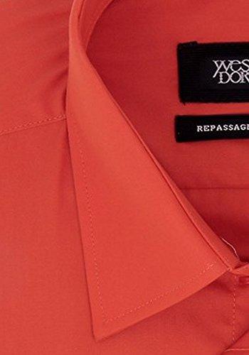 Classiche Yves Manica Camicia Uomo Dorsey Arancione Lunga aqqEr0x