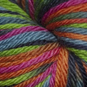 - Cascade Yarns 220 SuperWash Sport Multi Punk #121