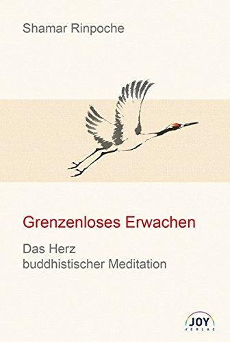 Grenzenloses Erwachen: Das Herz buddhistischer Meditation - Grundlegende Unterweisungen zur Shine- und Lhagthong Praxis