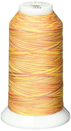 Superior Threads 14202 709 Sunburnt Variegated