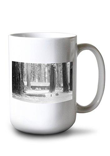 (Lantern Press Richardson Grove State Park Entrance (15oz White Ceramic Mug))
