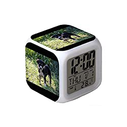 7Colors LED Changing Digital Alarm Clock Desk Thermometer Night Glowing Cube LCD Clock Home Decor Dog on Grass