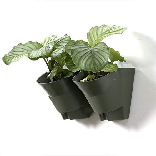 (Worth Garden Indoor Outdoor Vertical Wall Hangers with Pots Each Wall Mounted Hanging Pot has 2 Pockets 6 Total Pockets in This Set Indoor Outdoor Self Watering Planter Set, 3 Year Warranty)