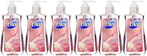 Dial Himalayan Pink Salt & Water Lily Hand Soap with Moisturizer 7.5 Oz (Pack of 6) - Pink Lily