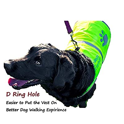 4LegsFriend Dog Safety Yellow Reflective Vest with Leash Hole 5 Sizes - High Visibility for Outdoor Activity Day and Night, Keep Your Dog Visible, Safe from Cars & Hunting Accidents