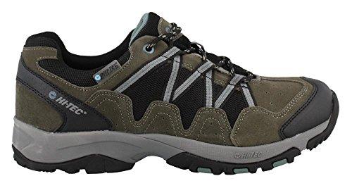 Cheap Hi-Tec Men's Dexter Low Waterproof Trail Runner, Gull Grey/Black/Goblin Blue, 14 D US